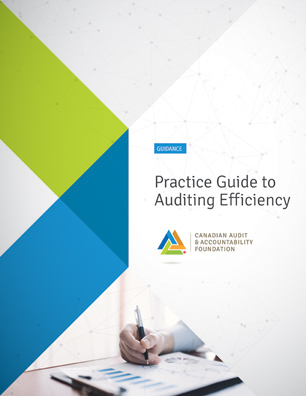 Practice Guide to Auditing Efficiency