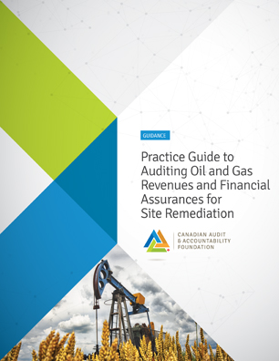 Practice Guide to Auditing Oil and Gas Revenues and Financial Assurances for Site Remediation