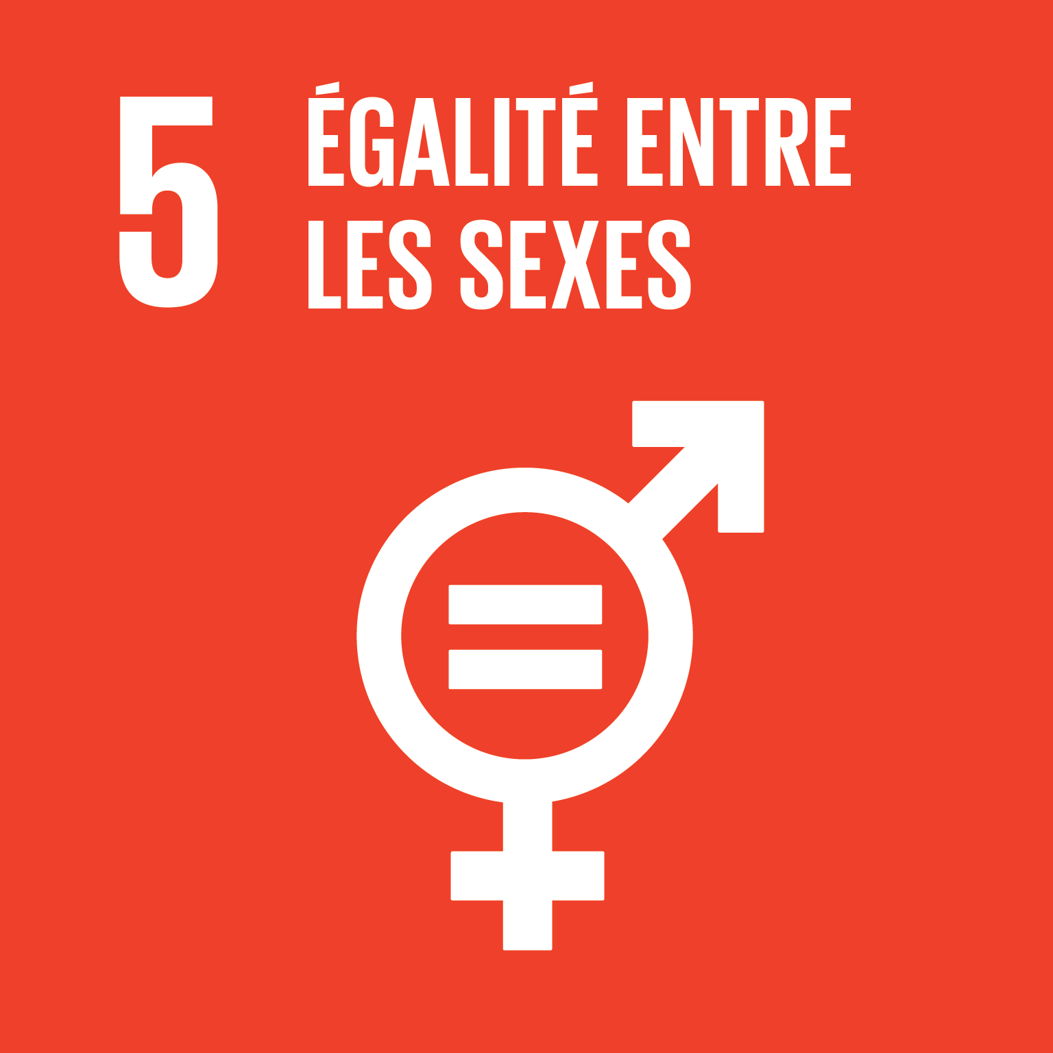 1 3 Supporting Dev Priorites SDG 5 FR
