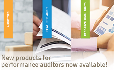 New products for performance auditors now available!