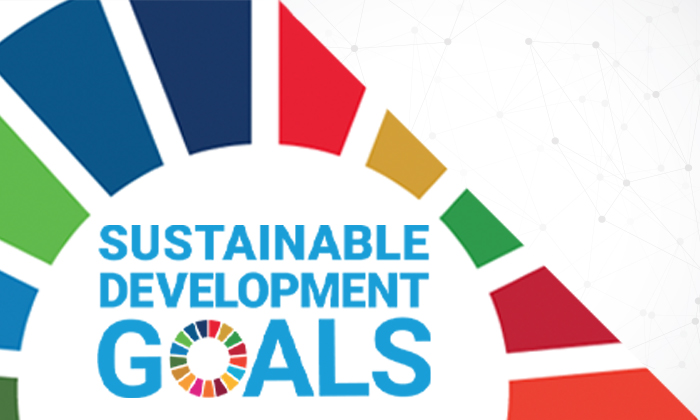 Auditing Progress Toward the United Nations' Sustainable Development Goals