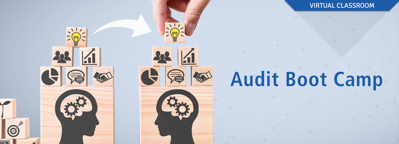Performance Audit Virtual Boot Camp