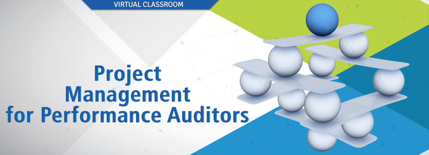 Project Management for Performance Auditors